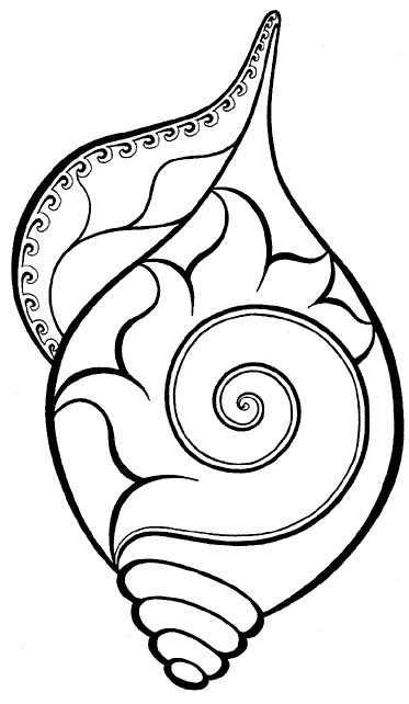 conch shell coloring pages - photo#13