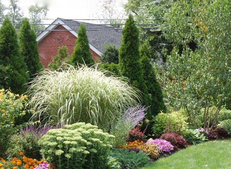 C mo combinar diferentes plantas para un jard n for Diferentes jardines
