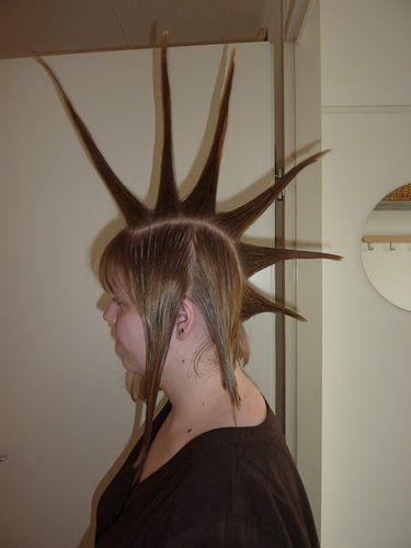 Hanekam of spykes met lang haar - Plazilla.com