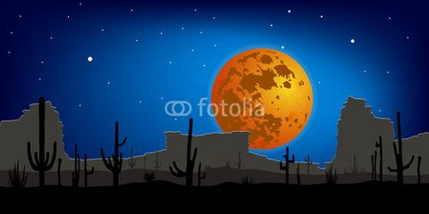 Desert with Saguaro Cactus against moon. Night scene. Vector landscape.