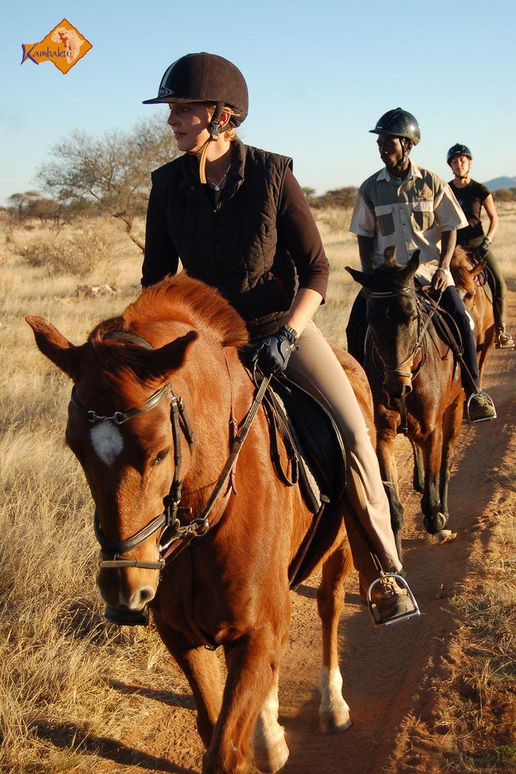 Im Galopp durch die Savanne - Top Reitsafaris in Afrika in der Kambaku Safari Lodge ..//.. The best horseback safari in Namibia – enjoy the next canter in the bush savanna    #horsesafari #safarionhorseback #reitsafaris #horses #kambaku #lodge #namibia #africa #afrika #safari #bestlodge #adventure #savanna #holiday #rider