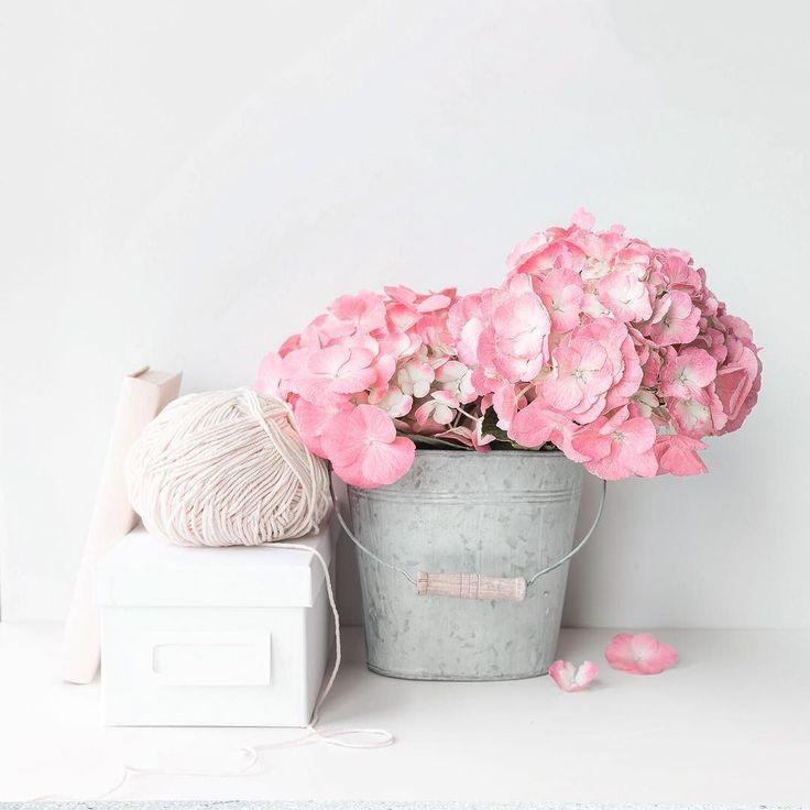 Весна - это только начало того, что нас ждет впереди... Цветы. Заработок денег в интернете без вложений.