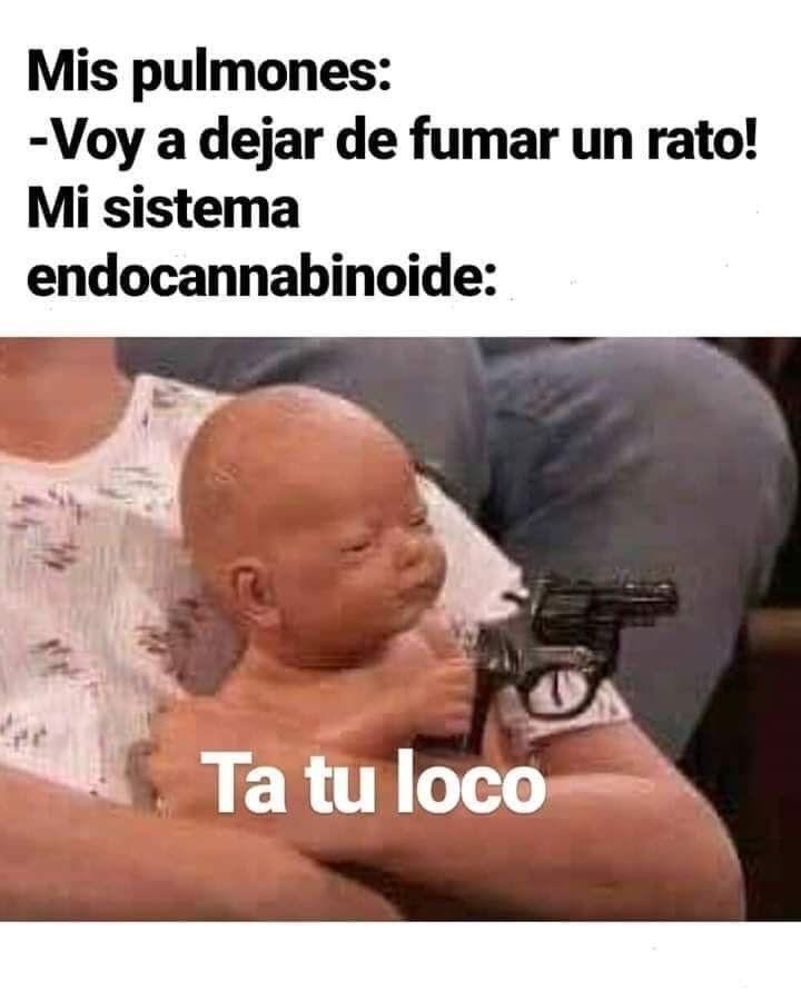 Pin De Valecabrera1212 En Memes En Espanol Memes Comicos Chistes Estupidos Memes