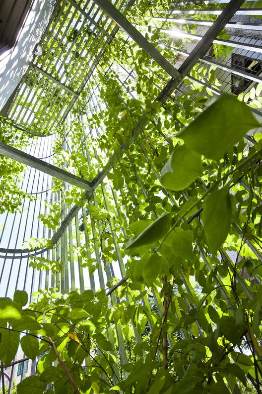 Green Renovation,© Hiroyuki Oki