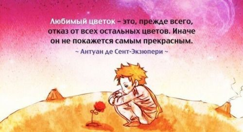 tumblr_inline_nqb2ufSygO1tqioob_500.jpg (500×272)