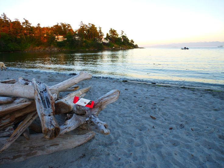 Our Wheat-free Cranberry Oat Crisps lazed on the beach with us in Cadboro Bay, Victoria, BC