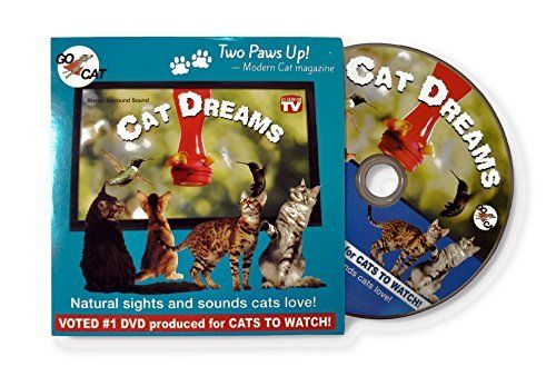 CAT Dreams DVD - The Movie Made Exclusively for Cats!