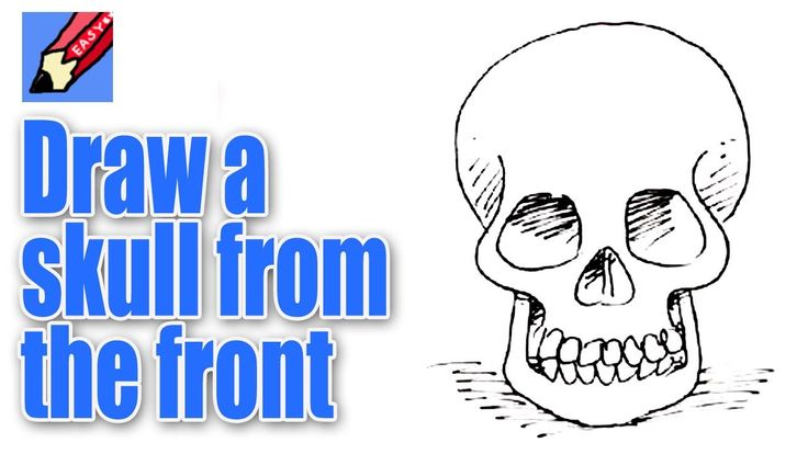 Get a head with your drawing and learn to draw a skull from the front with award winning illustrator, Shoo Rayner, who has illustrated well over 200 children...