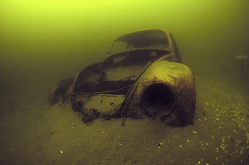 beetle   bottom   ocean oki  vw  pinterest cars vw beetles  beetle