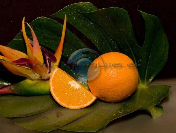 Orange 3 eLiquid → →  Kindheitserinnerungen an fruchtige BonBons und einen sehr süßen Orangengeschmack, von dem man zum dampfen am besten zwei nimmt, liefert das Orange 3 Liquid. ►► Inhalt Orange 3 Liquids: Aroma, rein pflanzliches Glycerin (VG) E422 (DAB), E1520 (Ph. Eur.), Propylenglycol (PG), und je nach Bestellung auch mit Nikotin zu kaufen. ◄◄ Sie können auch das Orange-3-Liquid bei uns ohne Nikotin bestellen.