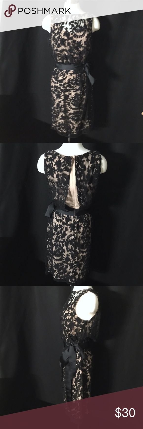 Adrianna Papell Cocktail Dress! Beautiful black lace over a cream cocktail dress. Great pre-owned condition. Adrianna Papell Dresses