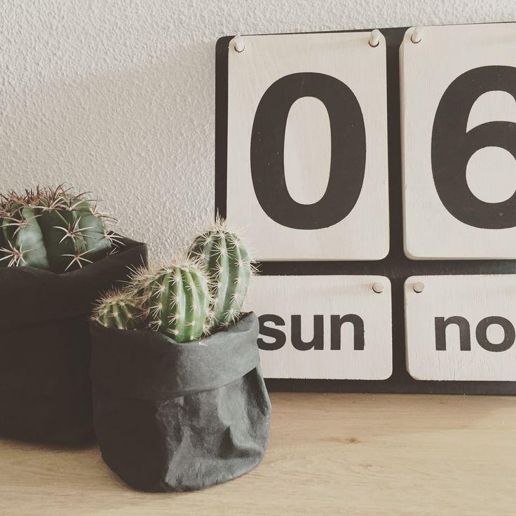 Cactussen in gave papieren zakken en houten kalender #mooiplaatje ...