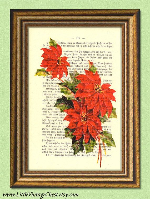 POINSETTIA  Christmas Print  Dictionary Art by littlevintagechest, $7.99