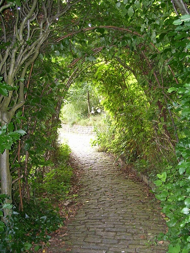 The Hidden Pathway - Chalice Well - Photo by J. Telyndru.    Great shot to help visualize ourselves exploring this incredible place.