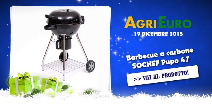 19 DICEMBRE 2015 - Voi non avete il giardino... ma il vostro amico si... e non vi invita mai per un barbecue? Regalategli questo piccolo bbq a carbone e vedrete che sarà costretto a invitarvi sempre! Solo 74€!