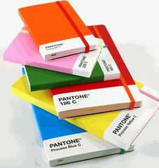 Pantone Sketchbooks and Notebooks. And they have them at Heliotrope in Decatur.