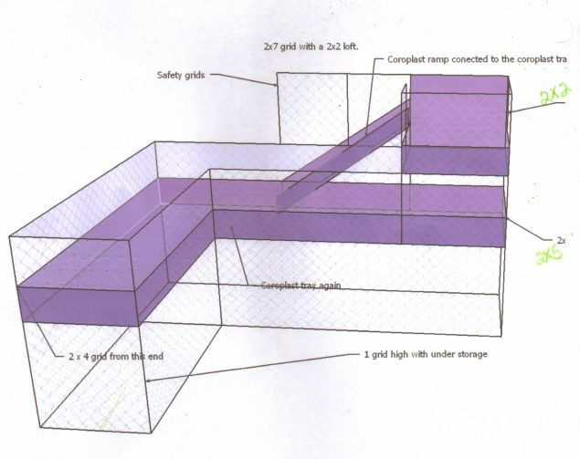 Guinea Pig Cage Sketch.   ...........click here to find out more     http://googydog.com