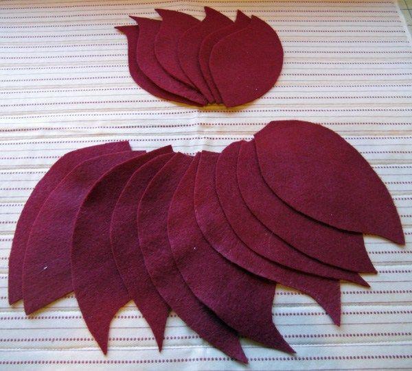 poinsettia petals all cut