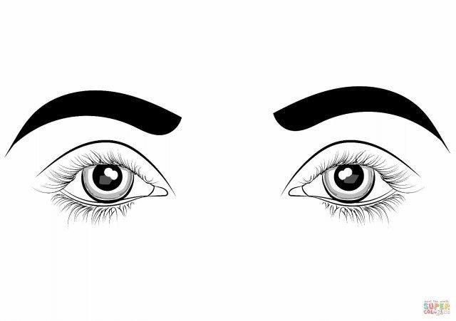25 Inspired Photo Of Eye Coloring Page Coloring Pages Free