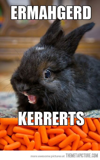 ERMAHGERDFunny Bunnies, Ermahgerd, Funny Pictures, Funny Stories, Funny Photos, Funny Commercials, Laugh So Hard, So Funny, Guinea Pigs