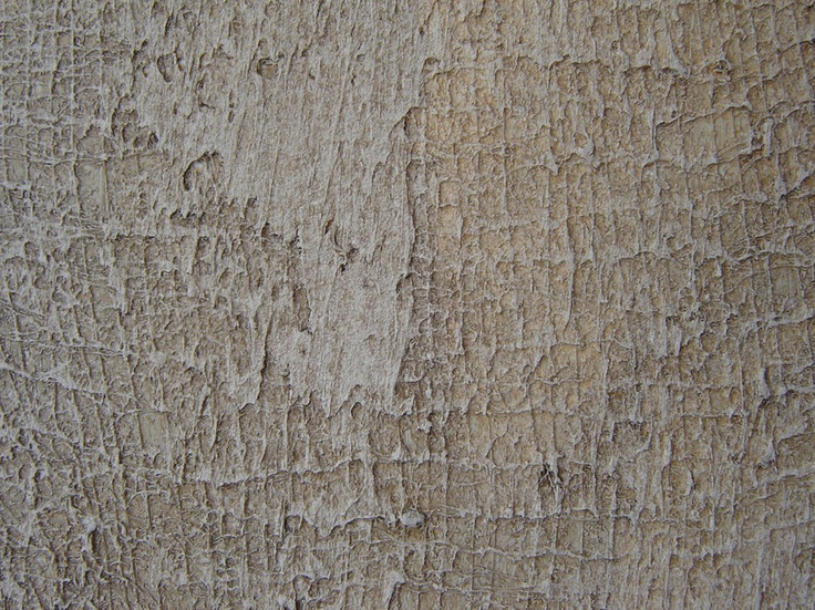 Plaster Faux Finish 113 best paint ~ wall ~ faux finishes images on pinterest | wall