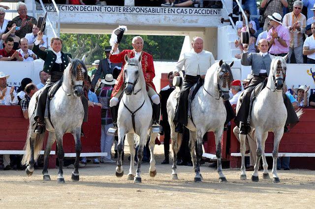 Peralta-Caballos PRE venta-Yeguada Pura Raza Español y CDE-Spanish horses-Elevage-Chevaux-Peralta: julio 2011