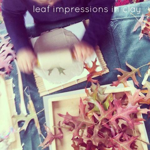 Reggio - leaf impressions in clay - An Everyday Story