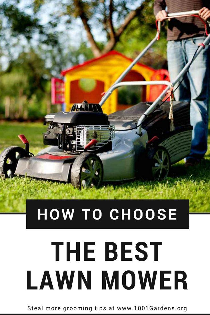 How To Choose The Best Lawn Mower Best Lawn Mower Lawn Lawn Mower