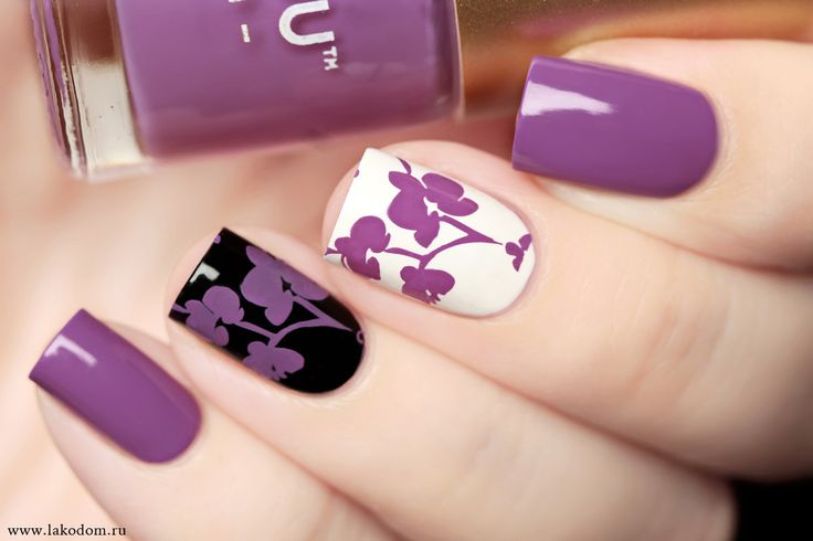 MoYou London Orchid Chic