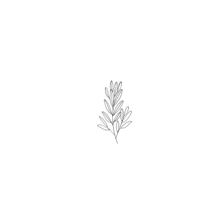 Minimalist Simple Leaf Tattoo: The 25+ Best Flower Line Drawings Ideas On Pinterest