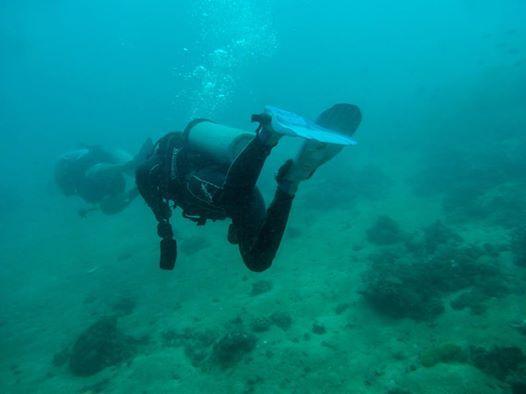 scuba diving lessons near metro manila