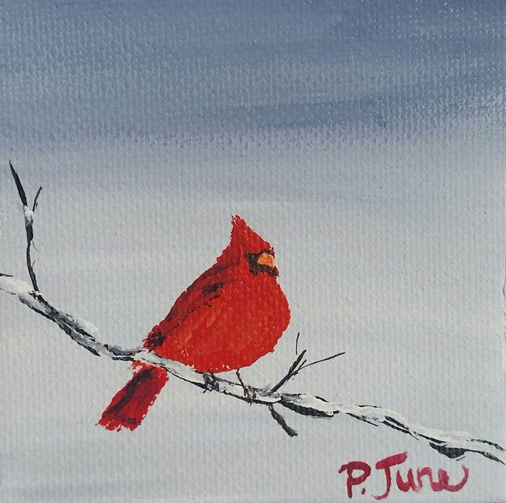 "FIND ME ON ETSY AT PHOEBEJUNEARTS  Mini Cardinal original acrylic painting on stretched canvas size 3""x3"" www.phoebejunearts.com  #cardinal #artwork #painting #mini"