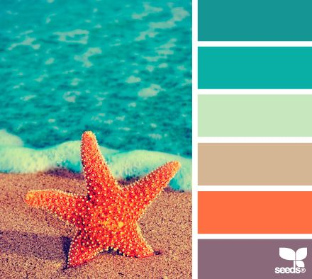summer hues - love the tangerine and turquoise together!