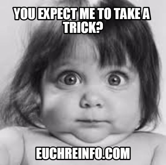 Come Out And Play Meme: 68 Best Images About Euchre Memes On Pinterest
