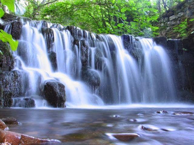 En esta imagen aparece el recurso renovable la cual es el for Recuperar agua piscina verde