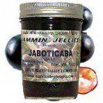 Jaboticaba Jam: Amazon.com: Grocery & Gourmet Food