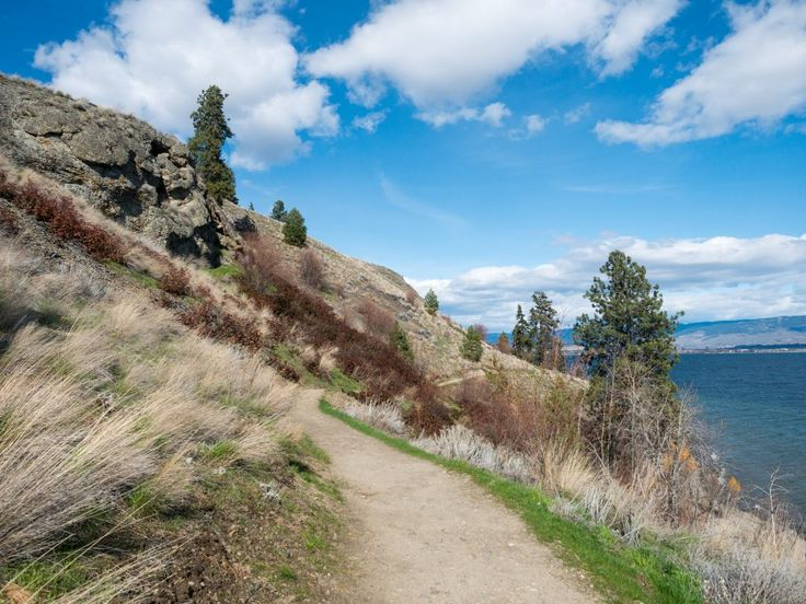 Five Great Family Hikes in West Kelowna – Backwoods Mama