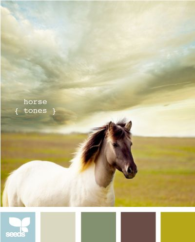 horse tones