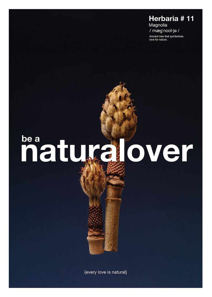 LECCION No. 10 / AMANTE POR NATURALEZA {Todo amor es natural}  Planta: Magnolio. Estos árboles milenarios, sus flores y sus semillas simbolizan a los amantes de la naturaleza.