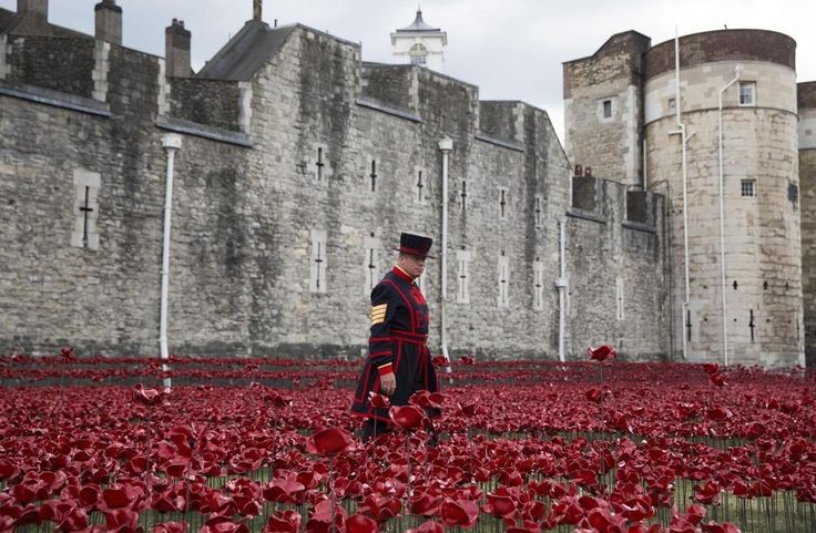 The last poppy will be planted on November 11 – Armistice Day. | 12 Stunning Pictures Of The Ceramic Poppies Outside The Tower Of London
