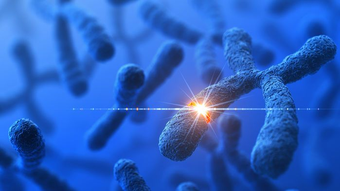 Two new studies feed the debate over whether genome sequencing should be key part of primary care