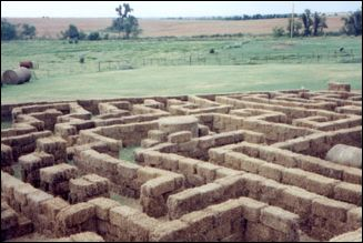hay maze