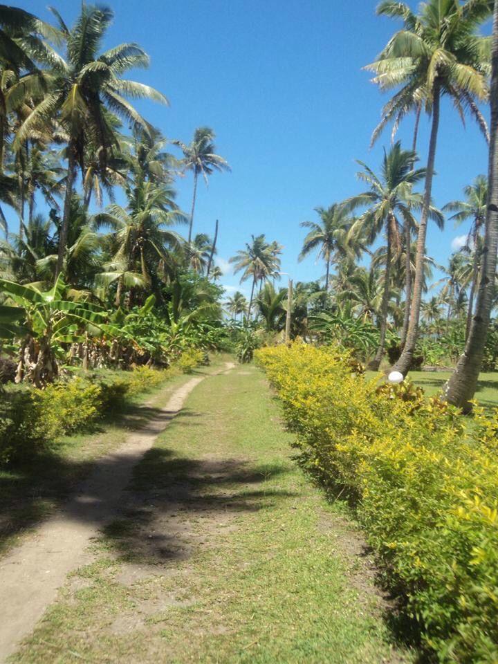 Nabua Lodge, Yasawa Islands, Fiji.