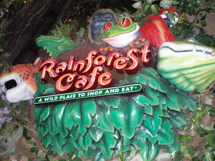 Rainforest Cafe, San Antonio, TX