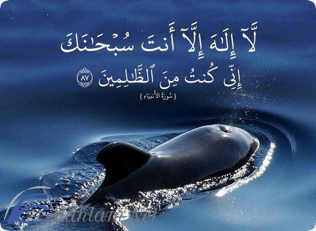 فضل لا اله الا انت سبحانك اني كنت من الظالمين انى كنت من الظالمين لا الا انت لا الا انت سبحانك Doa Islam Whale Islam