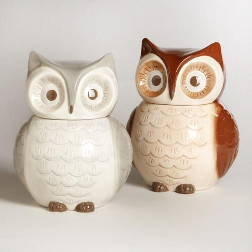 One of my favorite discoveries at WorldMarket.com: Owl Cookie Jars, Set of 2