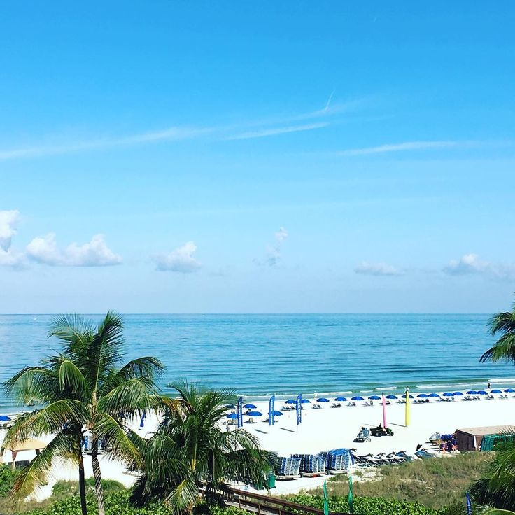 Marco Island Florida: 131 Best Images About MARCO ISLAND FLORIDA On Pinterest