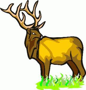 Elk Native American Birth Totem