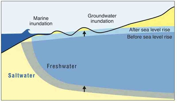 As sea level rises, much of Honolulu and Waikiki vulnerable to groundwater inundation   Geology Page