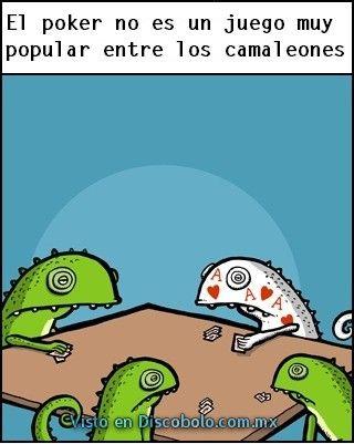 Poker entre los camaleones